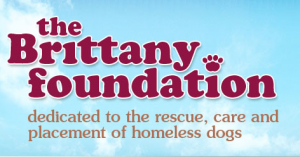 The Brittany Foundation