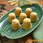 Frozen-treats-for-dogs-with-turmeric.jpg