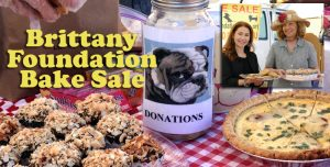 Brittany Foundation Bake Sale @ Santa Monica Antique Mart   Santa Monica   California   United States