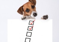 Dog travel check list