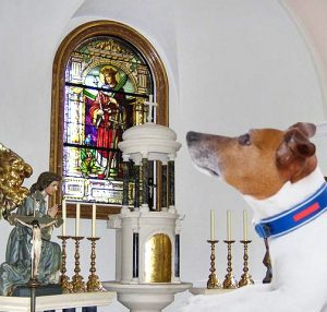 Canines at Covenant @ Covenant Presbyterian Church | Los Angeles | California | United States