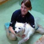 Water therapy for dogs