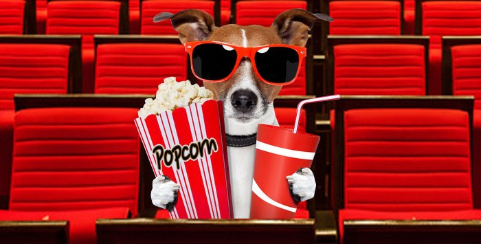 Dog-friendly-movie-screenings