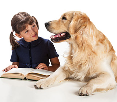 Beach-Animals-Reading-with-kids