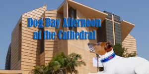 Dog Day Afternoon at the Cathedral @ Our Lady of the Angels Cathedral | Los Angeles | California | United States