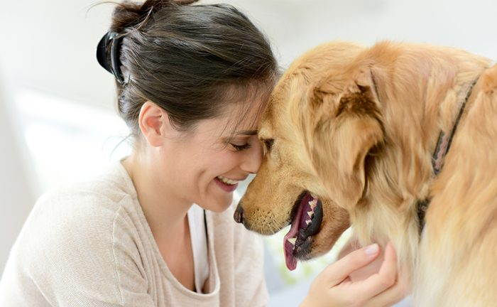 Dog Adoption Reality TV show