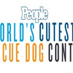 Cutest-rescue-dog-contest