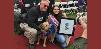 HauteDogs.org Best Senior Dog Award 2019