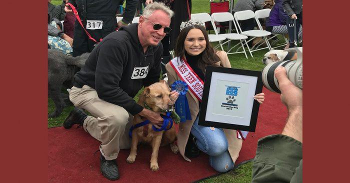 HauteDogs.org Best Senior Dog Award 2019