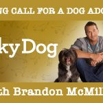 Casting-call-for Lucky-