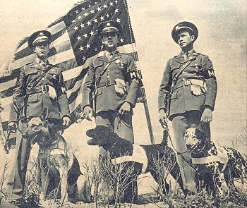 Dogs for Defense WWII