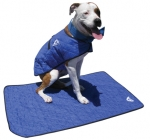 Keep Dogs Cool in Summer With Pads or Vests