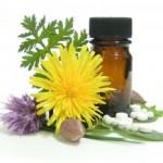 Homeopathy-gyogynovenyek_betegsegek_szerint-150x150