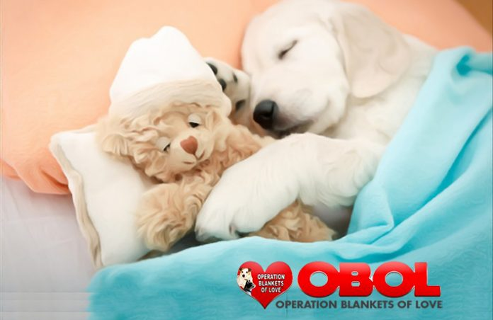 Operation-Blanekts-of-Love
