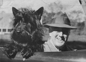 Famous-White-House-dogs-Fala